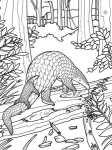 pangolin coloring sheet