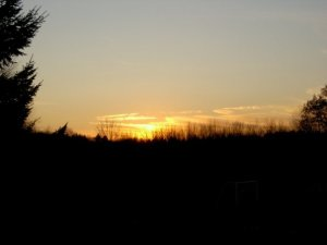 4pm sunset at Hampshire