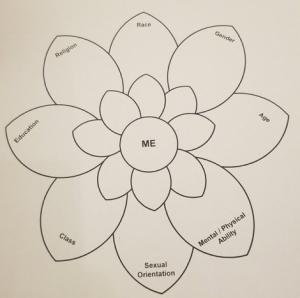 diversity petal