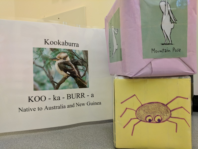 Kookaburra picture, yoga cube, song cube