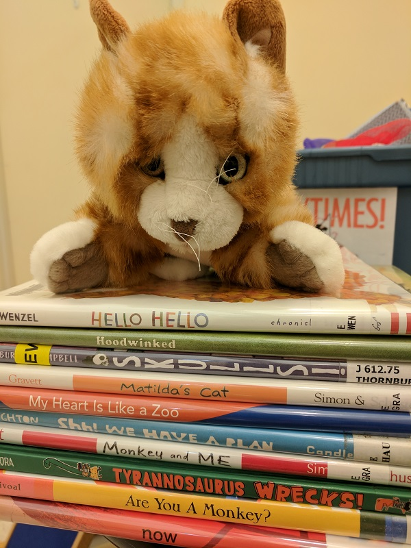 Cat puppet on stack of picture books