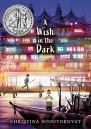 Cover image of A Wish in the Dark